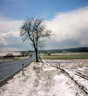 halbschnee
