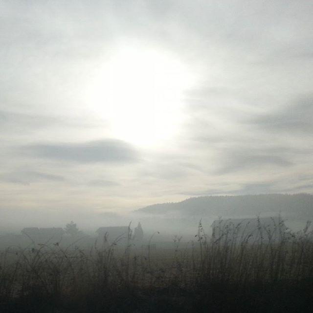 Nebelsonne #nofilter